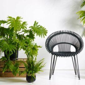 Vincent Sheppard Roy chair black
