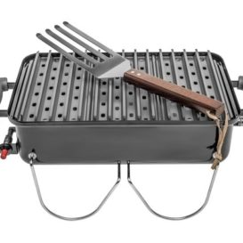 Weber Go anywhere portable grill