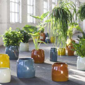 Jars design bp potten